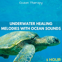 Ocean Therapy - Underwater Healing Melodies with Ocean Sounds (1 Hour) (Explicit)