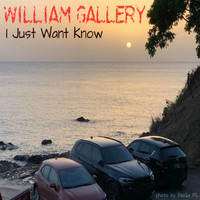 William Gallery - I Just Want Know