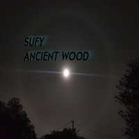 Sufy / - Ancient Wood