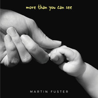 Martín Fuster - More Than You Can See
