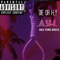Ash - Die or Fly