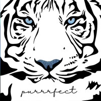 LP - Purrrfect