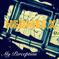 Hermes X - My Perception