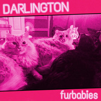Darlington - Furbabies (Explicit)