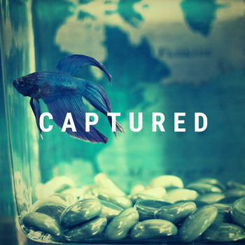 Nelly - Captured