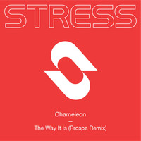 CHAMELEON - The Way It Is (Prospa Remix)