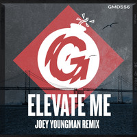 Bobby D'Ambrosio - Elevate Me (Joey Youngman Remix)
