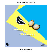 Rich James - On My Own