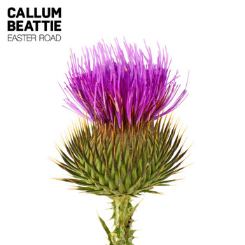 Callum Beattie - Easter Road