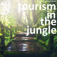 Amaro Mistral - Tourism in the Jungle
