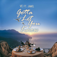 Vc - Gotta Let You Know (feat. Jamel)