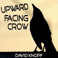 David Knopf - Upward Facing Crow