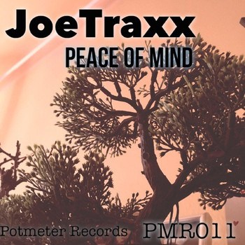 JoeTraxx - Peace of Mind