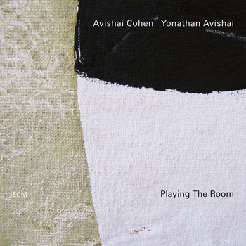 Avishai Cohen - Playing The Room