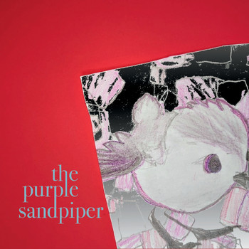 The Purple Sandpiper - The Purple Sandpiper