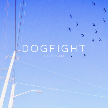 Lyle Kam - Dogfight