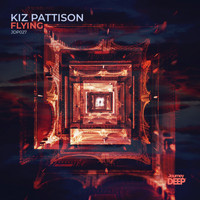 Kiz Pattison - Flying
