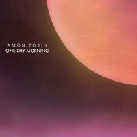 Amon Tobin - One Shy Morning
