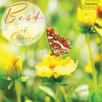 Academy of St Martin in the Fields / Vladimir Bunin / Solveig Riecker / English Chamber Orchestra - Best of Classics