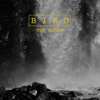 Bird - The River
