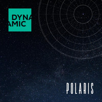 Dynamic - Polaris