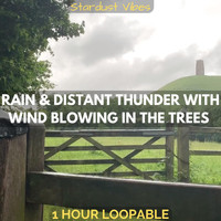 Stardust Vibes - Rain & Distant Thunder with Wind Blowing in the Trees: One Hour (Loopable)