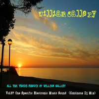 William Gallery - Vol. 37 One  Specific Electronic Music Sound (Continous Dj Mix)
