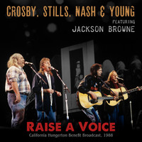 Crosby, Stills, Nash & Young - Raise a Voice (Live 1988)