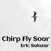 Eric Salazar - Chirp Fly Soar