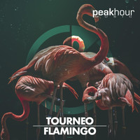 Tourneo - Flamingo