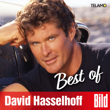 David Hasselhoff - BILD Best of