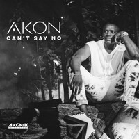 Akon - Can't Say No (Explicit)