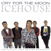 IceHouse - Cry For The Moon (Live 1988)
