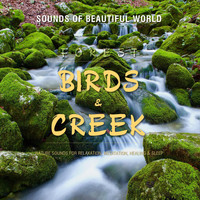 Sounds of Beautiful World - Forest: Birds & Creek (Nature Sounds for Relaxation, Meditation, Healing & Sleep)