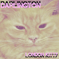 Darlington - London Kitty