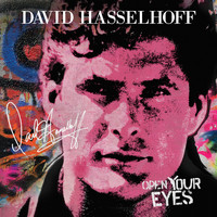 David Hasselhoff - Sugar Sugar (feat. Steve Cropper)