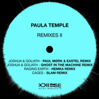 Paula Temple - Edge Of Everything Remixes 2