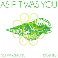 Schwarz & Funk - As If It Was You