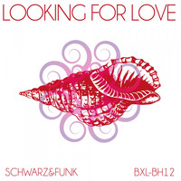 Schwarz & Funk - Looking for Love
