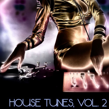 Various Artists - House Tunes, Vol. 2 (DJ Selection)