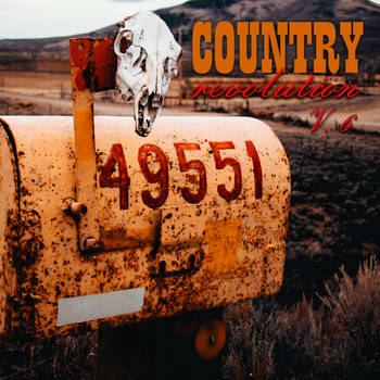 Various Artists - Country Revolution, Vol. 6