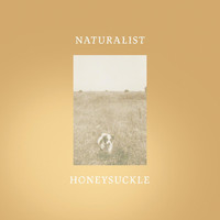 Naturalist - Honeysuckle
