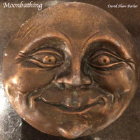 David Shaw-Parker - Moonbathing