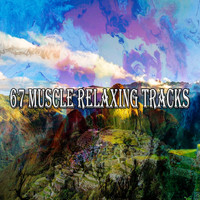 Forest Sounds - 67 Muscle Relaxing Tracks
