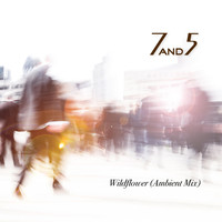 7and5 - Wildflower (Ambient Mix)