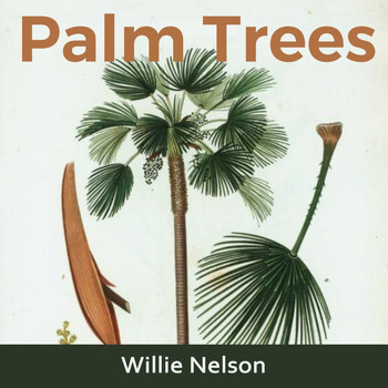Willie Nelson - Palm Trees