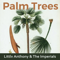 Little Anthony & The Imperials - Palm Trees