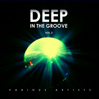 Various Artists - Deep in the Groove, Vol. 2