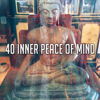 Forest Sounds - 40 Inner Peace of Mind