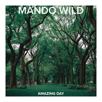 Mando Wild / - Amazing Day
